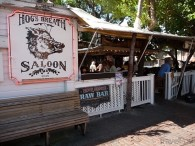 hogs-breath-saloon-key-west